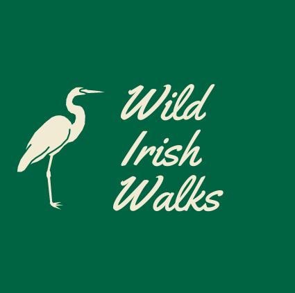 Wild Irish Walks